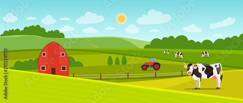 Summer landscape with farmhouse, tractor and herd of cows on the field. Vector flat style illustration