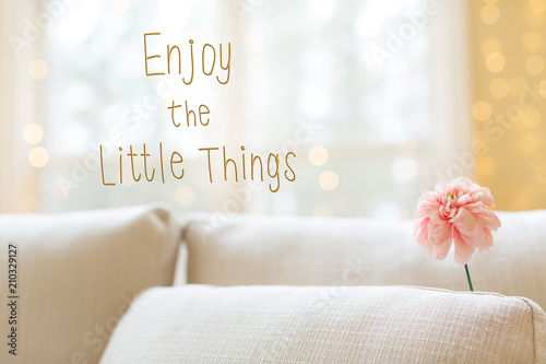 Enjoy The Little Things message with a flower in a bright interior ...
