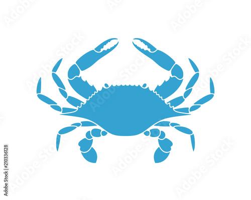 Photo Blue crab. Logo. Isolated crab on white background