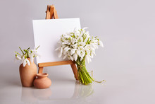 Bouquet Of Snowdrops And A Small Easel With A White Paper And Mini Jars On A Grey Background. Greeting Card With A Space For Text