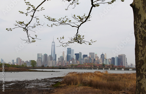 Photo  One World Trade Center, NYC -- Framed with Tree Branches along Shore in NJ