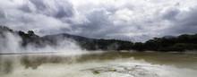 Rotorua Geothermal Geyser New Zealand North Island