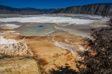 Mammoth Hot Springs At Yellows...