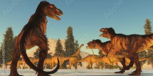 Fototapeta premium Atak Tyrannosaurus - Stado Tyrannosaurus rex planuje atak na stado dinozaurów Uberabatitan i szuka najsłabszego członka.