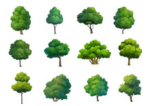 Illustration Of Trees  Isolate...