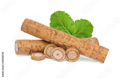 Photo burdock roots or kobo with green leaves isolated on white background