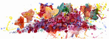 Grape Vine, Watercolor Illustration On White Background. Plant Element For Design And Creativity. Multi-colored Grapes.