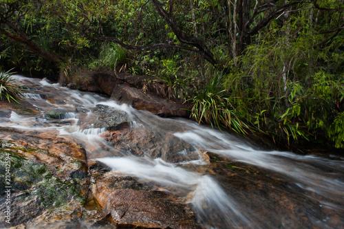 Fototapeten Forest river NATURE STREAM WATERFALL ON THE PEACEFULL MORNING