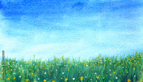 Photo sur Aluminium Bleu clair Grass with yellow and white flowers against blue sky in watercolor