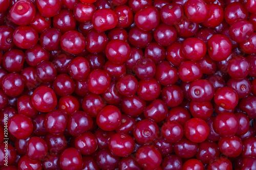 Red cherries background, close up