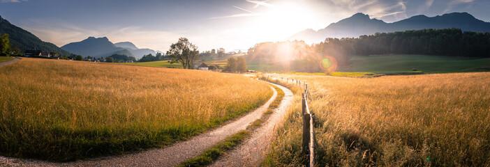 Feldweg, Getreidefeld und Berge im Sonnenuntergang, Harmonie, Breitbild