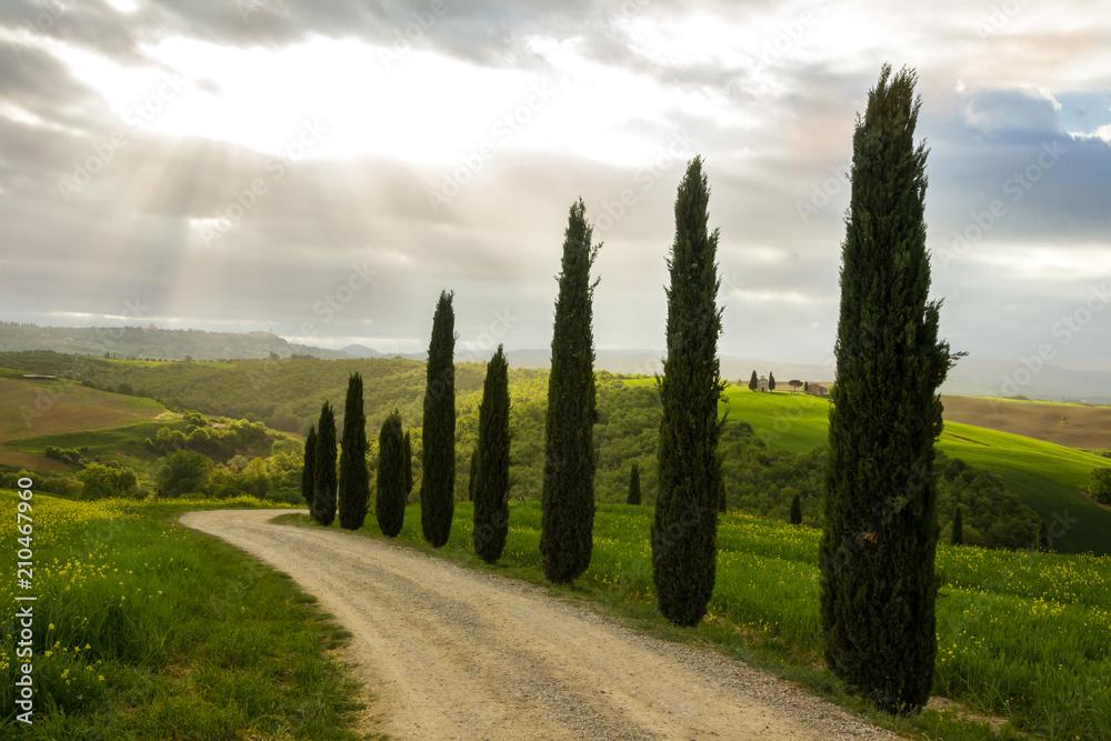 sunrise in Tuscany in Val di Orcia near Pienza