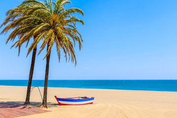Fishing boat and palm trees on sandy beach in Estepona town on Costa del Sol, Spain