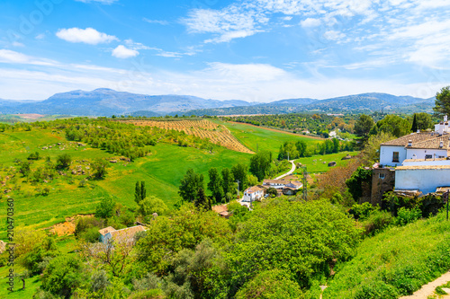In de dag Lime groen Green landscape of Spanish countryside in Ronda town, Andalusia, Spain