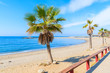 View of beautiful sandy beach with palm trees near Marbella town, Andalusia, Spain
