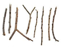 Dry Branch Sticks On A White B...
