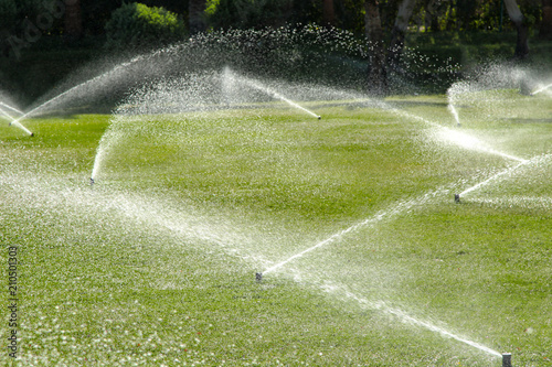 Fotobehang Tuin Irrigation System Watering the green grass, blurred background