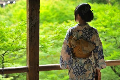 Foto auf AluDibond Lime grun 青モミジを眺める女性