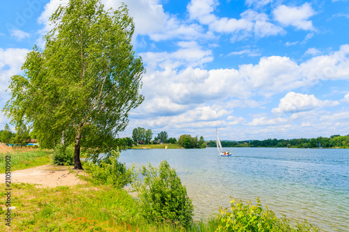 Fototapeta Green trees on shore of Kryspinow lake near Cracow city on sunny beautiful summer day, Poland obraz