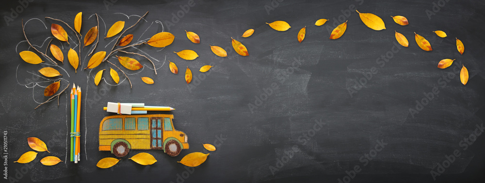 Fototapeta Back to school concept. Top view banner of school bus and pencils next to tree sketch with autumn dry leaves over classroom blackboard background.