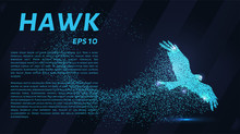 Hawk Of The Particles. The Sil...