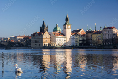 Deurstickers Praag Swans. The Vltava River, Prague.