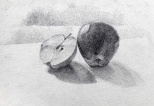 Still Life, Pencil Drawing, Sk...