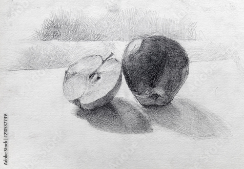 still life, pencil drawing, sketch Canvas-taulu