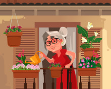 Happy Smiling Granny Grandma Grandmother Watering Flowers Plant. Retirement Hobby Flat Cartoon Graphic Design Concept Illustration