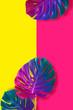 Leinwanddruck Bild - Tropical multicolored gradient monster leaves.