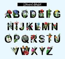 Botanical Alphabet With Wild A...