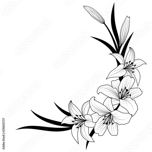 Carta da parati lily flower