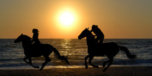 Two Horse Riders Galloping On ...