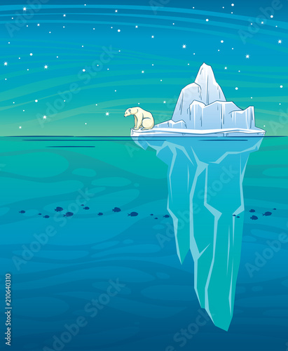 Fotografía Polar bear. iceberg, ocean and night sky.