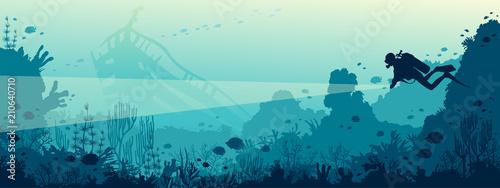 Fotografia Scuba diver, underwater wreck, coral reef, sea.