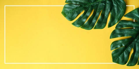 close up green tropical leaves laying on yellow paper panoramic background with white frame border for summer season , ad your idea,text,ads,content on image
