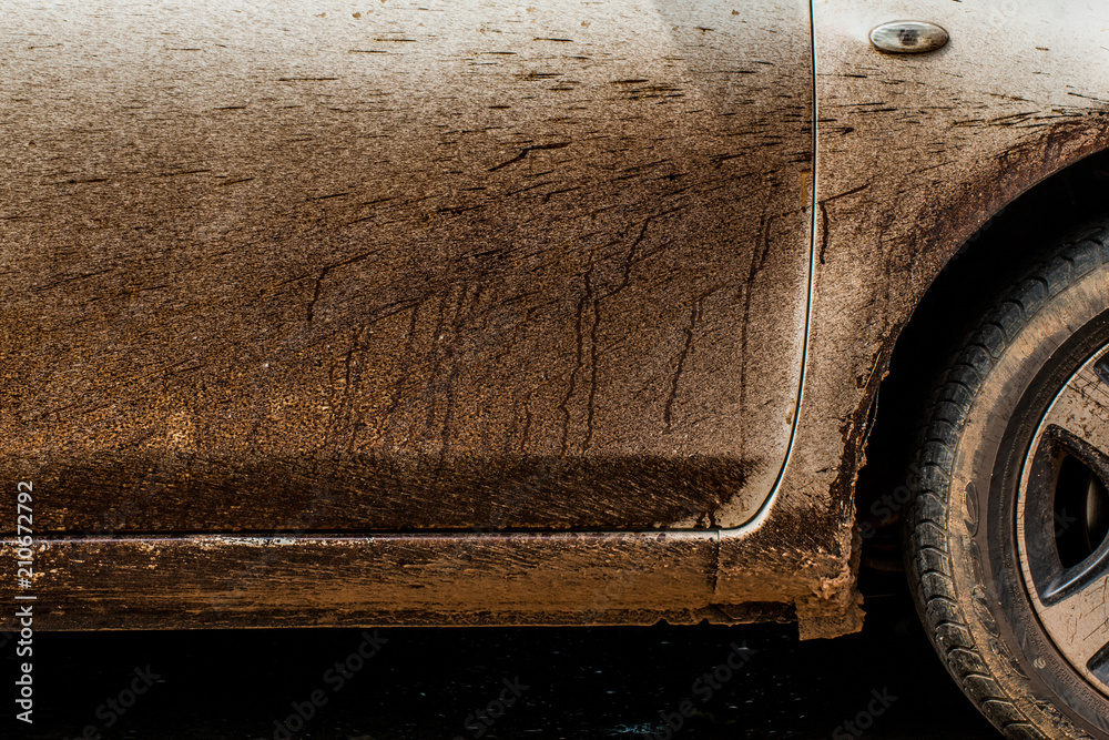 Fototapety, obrazy: Asphalt on a white car difficult to clean dirty car,