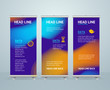 Roll Up Banner Stand Design Template. Vector