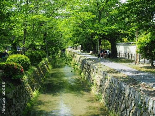 Foto op Plexiglas Kyoto 哲学の道 京都