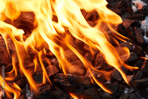 Tuinposter Grill / Barbecue Orange wild fire burning on black coal and ash,
