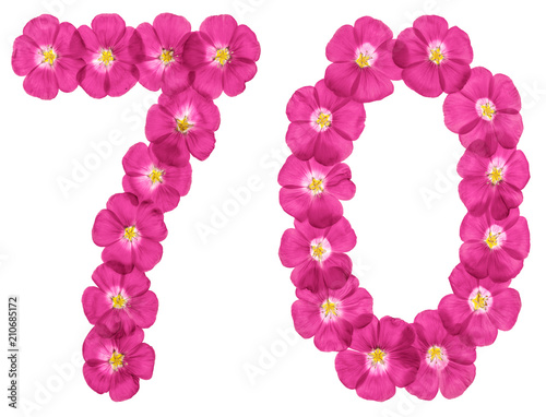 Fotografia  Arabic numeral 70, seventy, from pink flowers of flax, isolated on white backgro