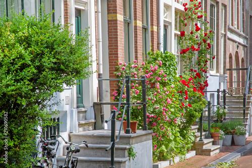 Valokuva  Grünes Amsterdam