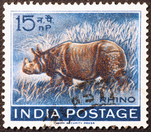 Rhino On Old Indian Postage St...