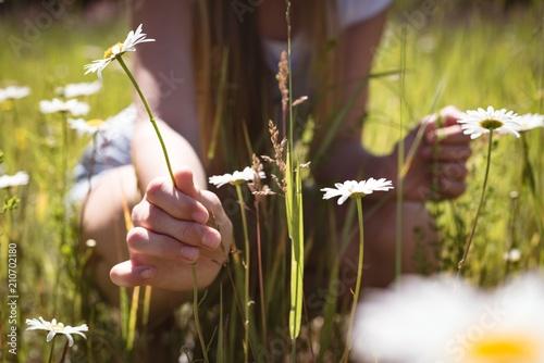 Girl touching flower in field