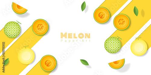 Fresh melon fruit background in paper art style , vector , illustration - 210710302