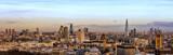 Fototapeta Londyn - London Skyline Day