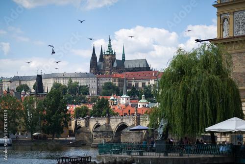 Foto op Plexiglas Artistiek mon. Prague Castle and Vltava river