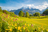 Fototapeta Flowers - Idyllic mountain scenery in the Alps with blooming meadows in springtime
