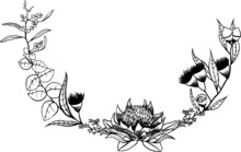 Australian Floral Flower Wreath Border Line Drawing