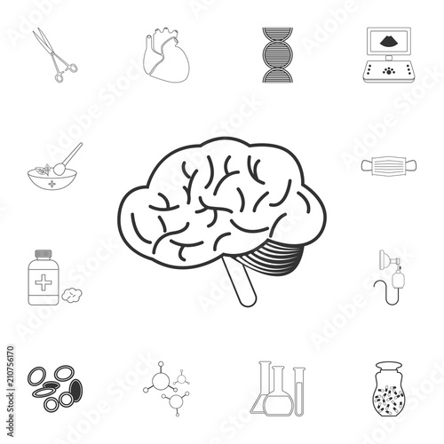 The human brain icon  Simple element illustration  The human